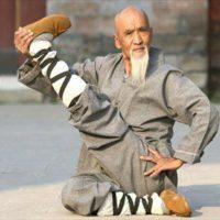 Čínská rodinná linie (nejen v kung-fu) – Si-fu, Si-hing …