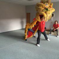 Nácvik Lvího tance
