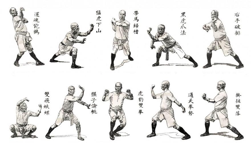 proč cvičit kung-fu